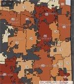 dupage map