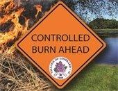 controlled burn (JPG)