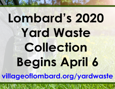 yard waste news item smaller