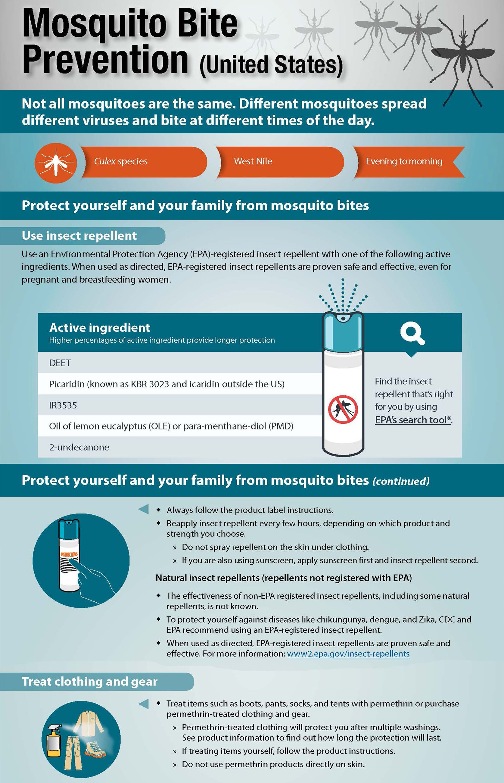 Mosquito Prevention CDC Infographic